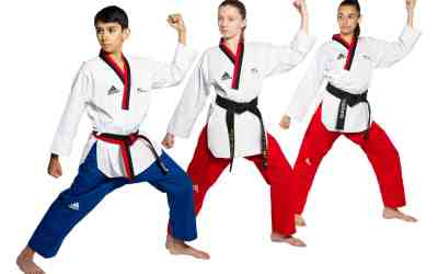 Seven Incredible Benefits for Kids to Learn Martial Arts