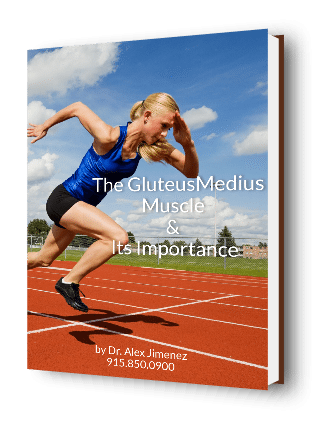 The Gluteus Medius After Injury Ebook Cover