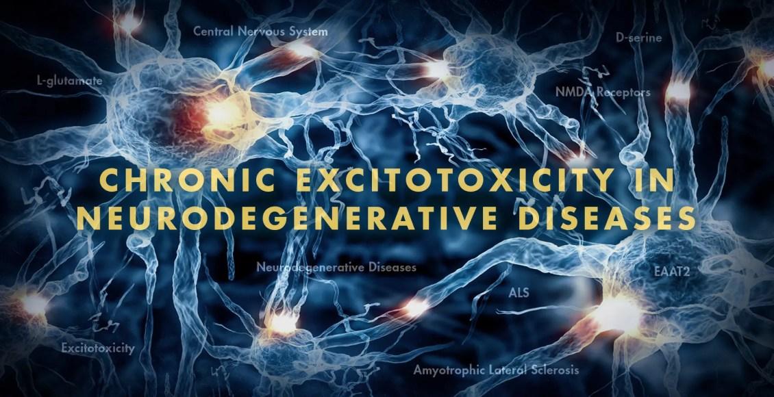 Functional Neurology: Chronic Excitotoxicity in Neurodegenerative Diseases Part 2   El Paso, TX Chiropractor