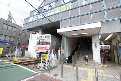 yukigataniootuka1