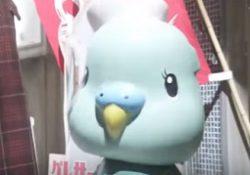 hiyokko61-いち子