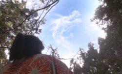 naotora23-雲