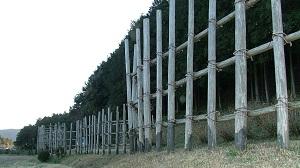 naotora42-材木