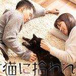 Suteneko ni Hirowareta Otoko / 捨て猫に拾われた男 (2019)