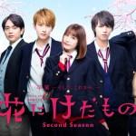 Hana ni Kedamono Second Season / 花にけだもの~Second Season~ (2019) [Ep 1 – 5 END]