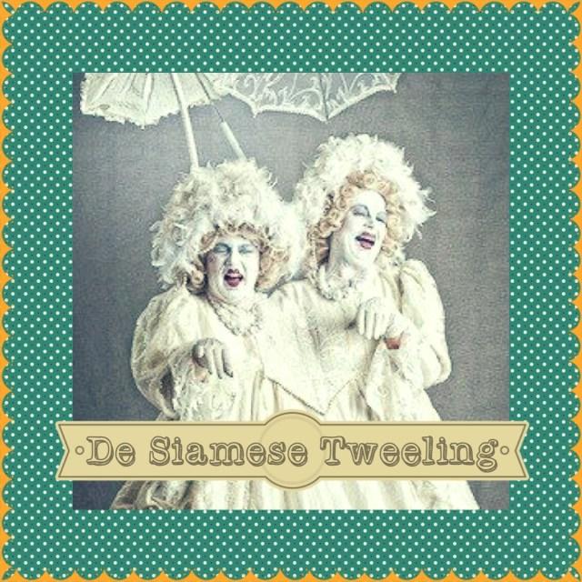 De Siamese Tweeling