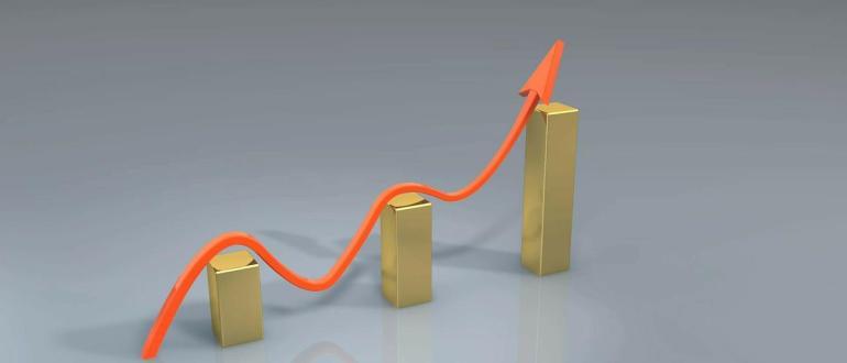 Как выбрать нишу и построить прибыльный бизнес