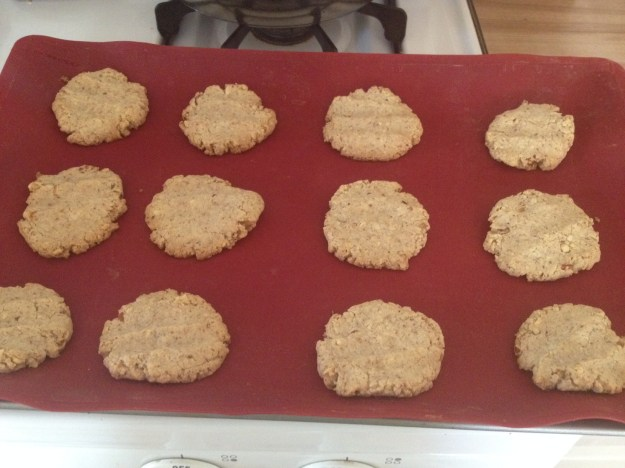 These really are the best gluten free quick cookies ever. They even have a little bit of healthy in them.