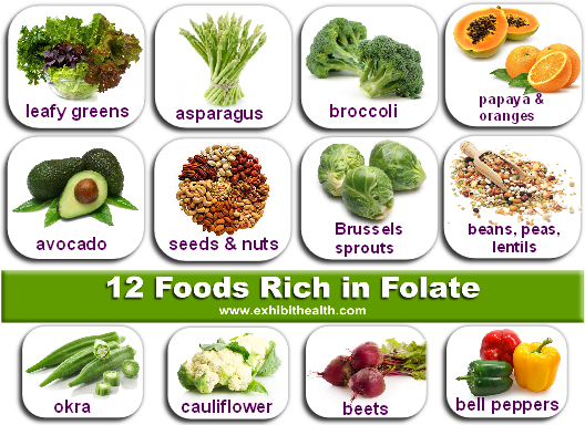 Is folate in food safe for MTHFR mutants? In these foods YES. Thanks to exhibithealth.com for the great image.