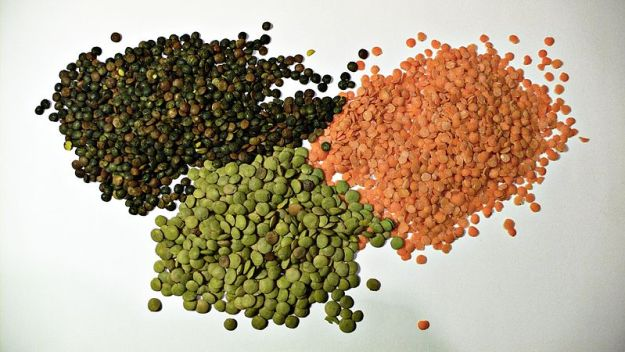Lentils are great sources of dietary fiber and fiber for gallbladder sludge and other detox is absolutely essential. Picture from wikimedia commons, by Hohum.