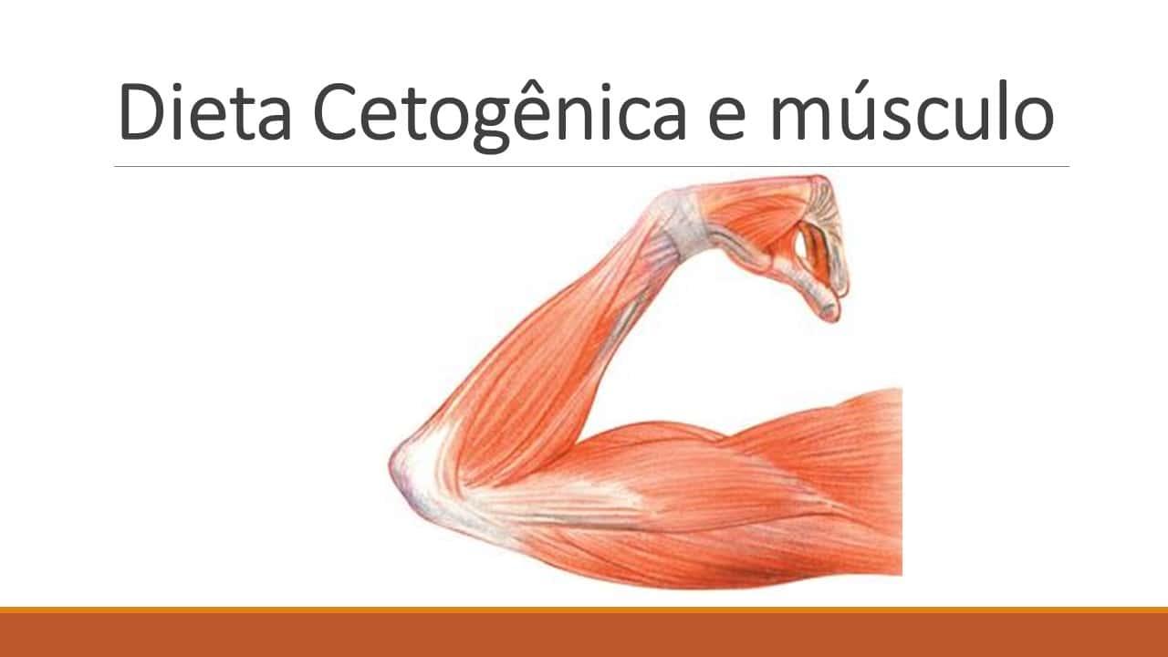 dieta cetosisgenica sociedade brasileira