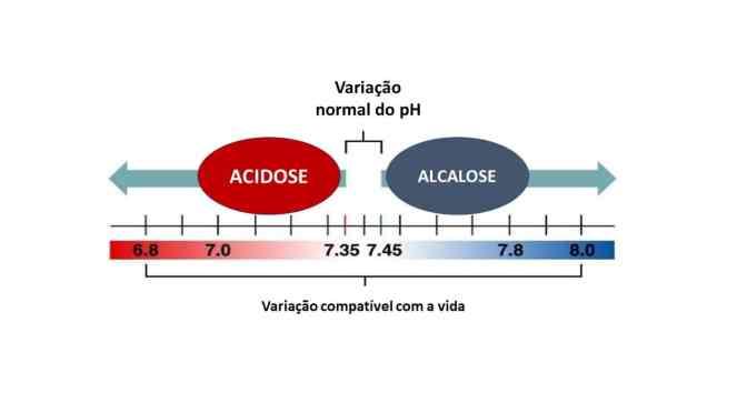 Dieta cetogênica provoca cetoacidose?