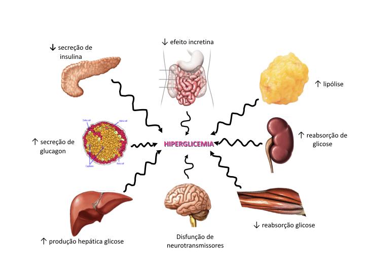 patogénesis de la diabetes tipo 2. resistencia a la insulina