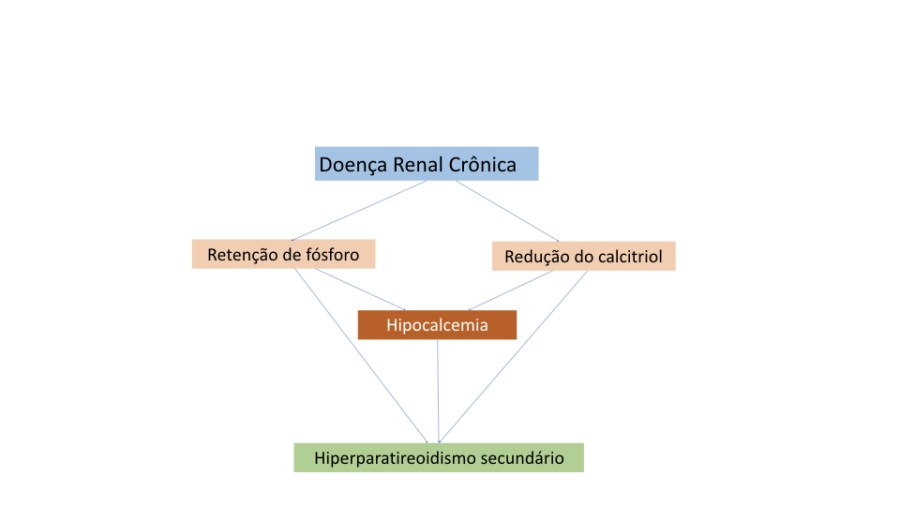 Em conjunto: o aumento do fósforo, a queda do cálcio e a deficiência de vitamina D presentes na doença renal crônica levam ao hiperparatireoidismo