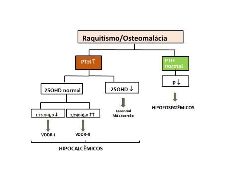 diagnóstico diferencial laboratorial do raquitismo e osteomalácia: hipocalcêmicos e hipofosfatêmicos