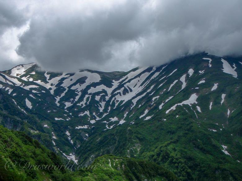 7月の天気の悪い日の雪倉岳