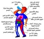 فوائد و أضرار شرب الماء الساخن على الريق… معلومات لاول مرة ستسمعها – هااام جداُ !!