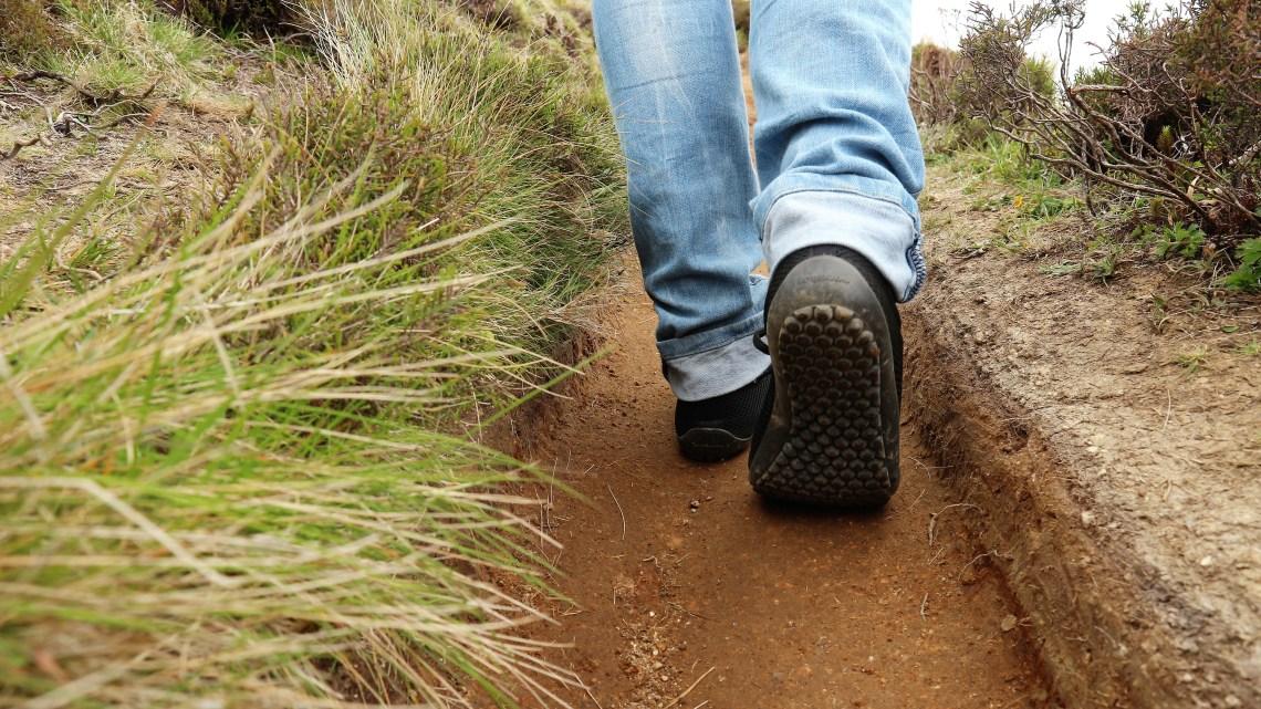 8 Gründe warum wir öfter spazieren gehen sollten