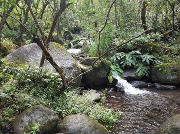 Kalalau Trail (12)