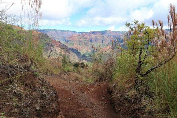 Waimea Canyon (6)