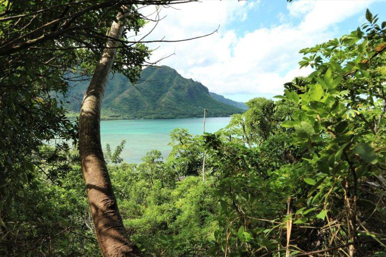 Crouching Lions Head Hawaii (3)