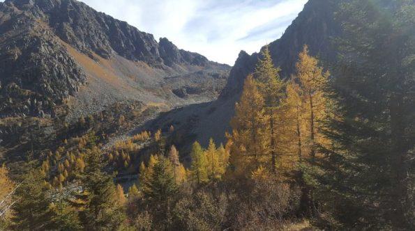 Monte Cauriol (5)