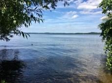 Am Schweriner See