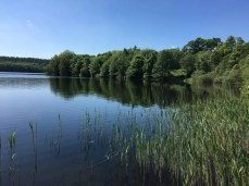 Am See bei Dutzow