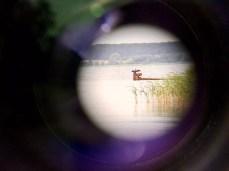 Ein Kormoran durch das Fernglas fotografiert