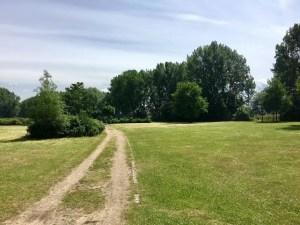 Radtour durch den Elbpark Entenwerder
