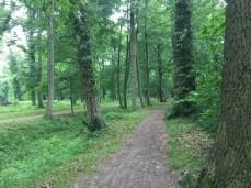 Radweg in Dobbertin