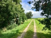 Wandern auf der Insel Usedom: Usedomer Rundweg in Grüssow