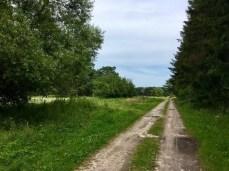 Wandern hinter Rankwitz in Richtung Liepe