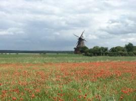 Windmühle bei Goldberg