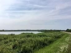 Auf dem Deich zwischen Krummin und Neuendorf auf der Insel Usedom