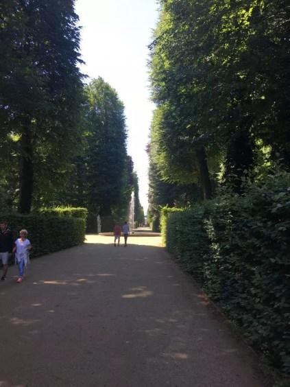 Auf der Hauptallee in Sanssouci