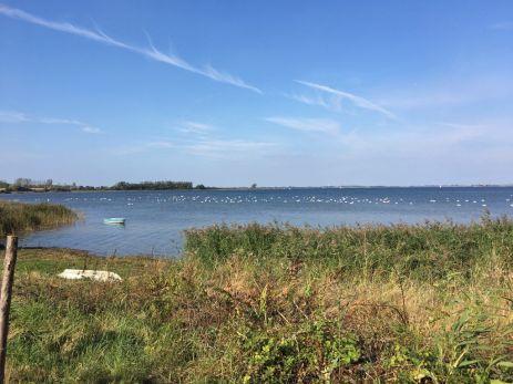 Blick auf die Eggerswiek in der Wismarer Bucht