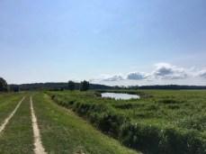 Der Deich zwischen Krummin und Neuendorf auf der Insel Usedom