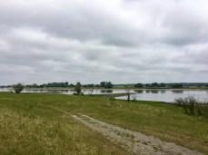 Fahrradtour an der Elbe: Die Elbe bei Werben