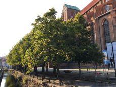 In Wismar an der Nikolai Kirche