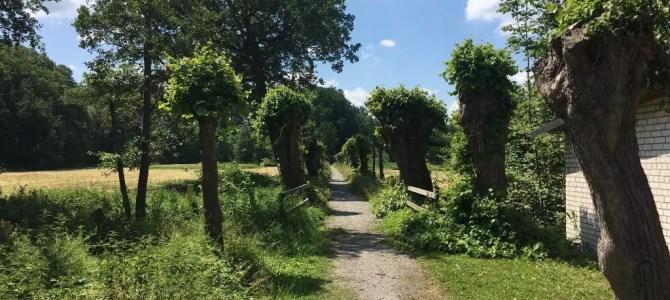 Fahrradtour von Lüchow über Uelzen nach Bienenbüttel