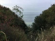 Wilde Steilküste der Ostsee bei Warnkenhagen