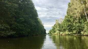 Auf dem Mirower Kanal (Mecklenburger Seenplatte)