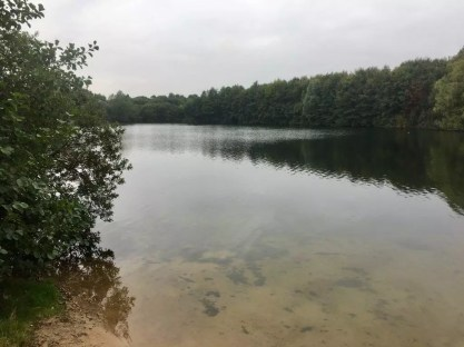 Der Hummelsee in Hummelsbüttel