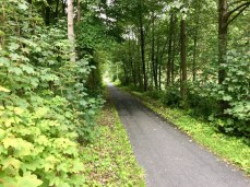 Radtour im Harz: Der gute Radweg hinter Wildemann im Harz