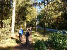 Wanderweg an der B209
