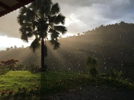 Regenschauer am Nachmittag auf der Kaffee-Hacienda