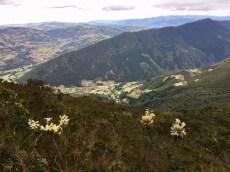 Blick hinunter vom Berg