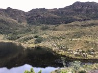 Die Lagune mit typischer Vegetation des Páramo