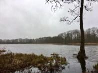 Winterliche Idylle am Schloßsee bei Wrangelsburg